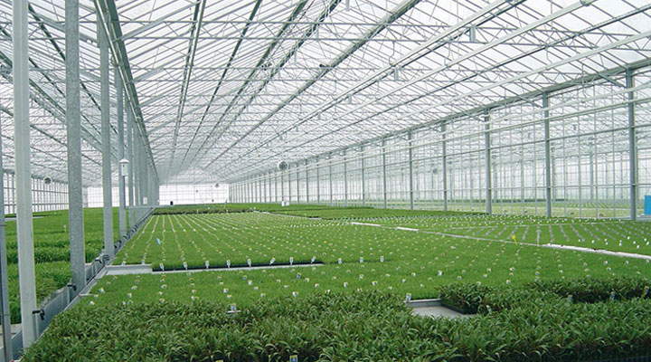 Polycarbonate-Greenhouse-Panels